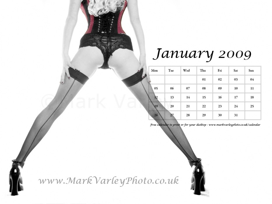 photoblog image January 2009 calendar